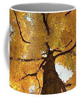 Yellow Up Coffee Mug by Steve Stuller