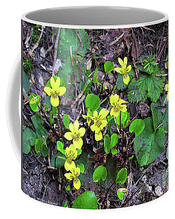 Cascade Mountains Wildflower Coffee Mug