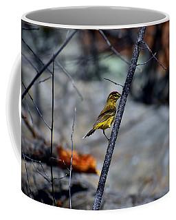 Yellow Warbler 2 Coffee Mug