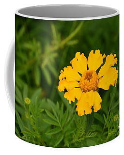 Yellow Zinnia Coffee Mug