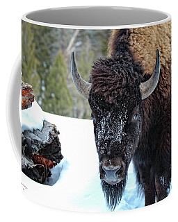 Yellowstone Buffalo Stare-down Coffee Mug