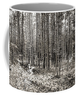 Yellowstone Fire Burn Scar Coffee Mug