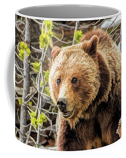 Coffee Mug featuring the painting Yellowstone Grizzly Bear by Christopher Arndt
