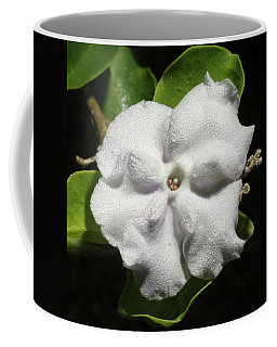 Coffee Mug featuring the photograph Yesterday, Today And Tomorrow by Richard Rizzo