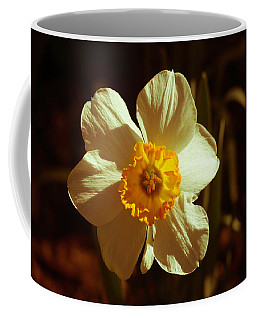 Yesteryear Daffodil Coffee Mug