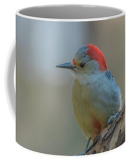 Young Red Bellied Woodpecker Coffee Mug