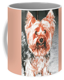Coffee Mug featuring the photograph Yorkie Ready For A Park Walk by Belinda Lee