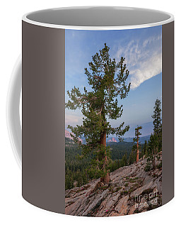 Coffee Mug featuring the photograph Half Dome From May Lake by Sharon Seaward