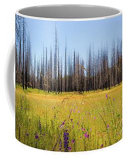 Yosemite Juxtaposition By Michael Tidwell Coffee Mug