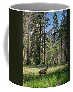 Yosemite Valley Mule Deer Coffee Mug