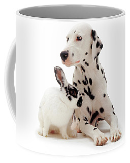 You Knocked My Spots Off Coffee Mug