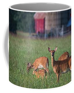 You Lookin' At Me? Coffee Mug