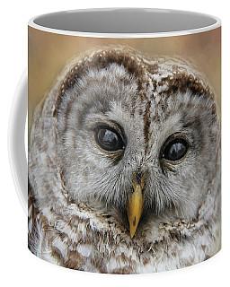 You Lookin At Me Coffee Mug by Davandra Cribbie