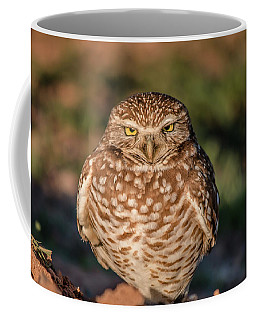 You Woke Me Up Coffee Mug