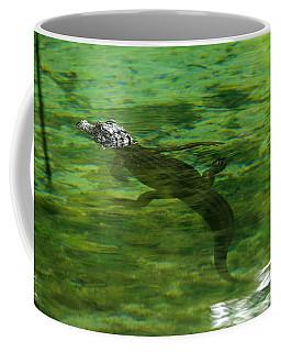 Young Alligator Coffee Mug