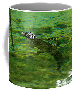 Young Alligator Coffee Mug