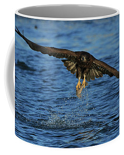 Young Bald Eagle Catching Fish Coffee Mug