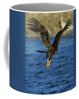 Young Bald Eagle With Fish Coffee Mug