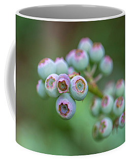 Young Blueberries Coffee Mug