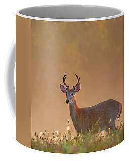 Young Buck Square Coffee Mug
