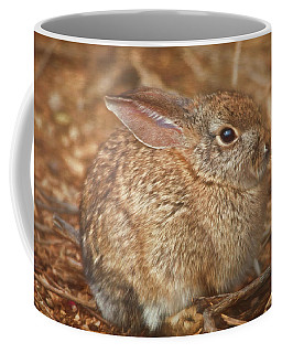 Young Cottontail In The Morning Coffee Mug