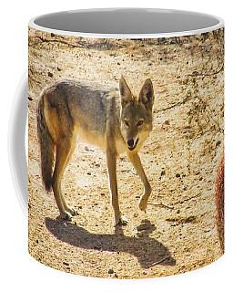 Young Coyote And Cactus Coffee Mug
