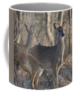 Young Deer In A Pack Coffee Mug