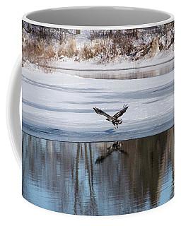 Young Eagle Reflection And Shadow Coffee Mug by David Bearden