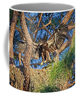 Young Eagle On Nest Coffee Mug