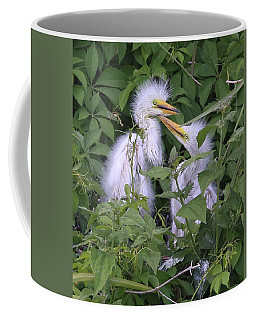 Young Egrets Coffee Mug