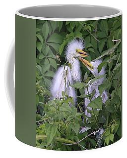 Young Egrets Coffee Mug