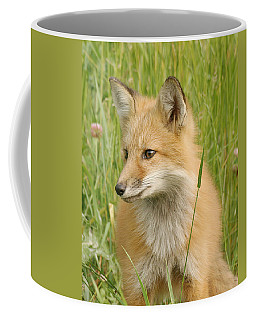 Coffee Mug featuring the photograph Young Fox by Doris Potter