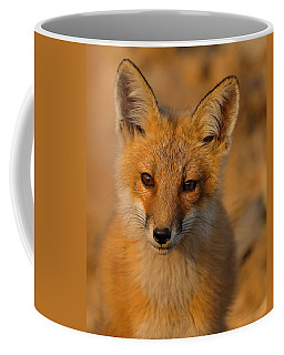 Young Fox Coffee Mug
