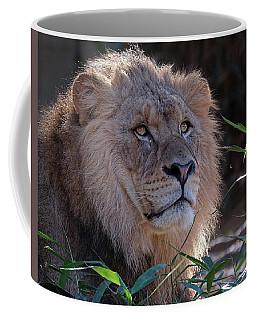 Young Lion King Coffee Mug by Ronda Ryan