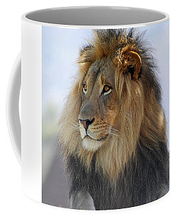 Coffee Mug featuring the photograph Young Male Lion by Howard Bagley