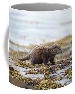 Young Otter Coffee Mug