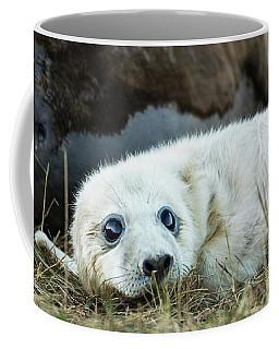 Young Pup Coffee Mug