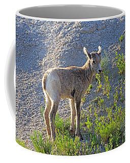Young Rocky Mountain Bighorn Sheep Coffee Mug