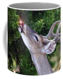 Your Nose So Bright Coffee Mug