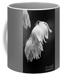 Yucca After The Rain Coffee Mug