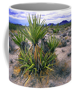 Yucca And Cinder Cones Coffee Mug