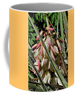 Coffee Mug featuring the photograph Yucca Bloom I by Ron Cline