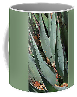 Coffee Mug featuring the photograph Yucca Leaves by Ron Cline