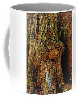 Z Z In A Tree Coffee Mug