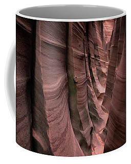 Coffee Mug featuring the photograph Zebra Canyon by Edgars Erglis