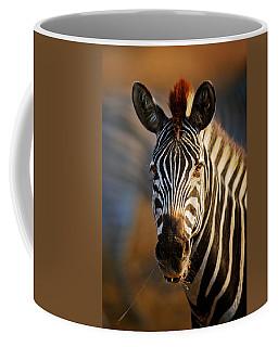 Zebra Close-up Portrait Coffee Mug
