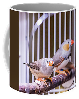 Zebra Finch Pair Coffee Mug