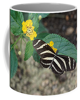 Coffee Mug featuring the photograph Zebra Longwing Butterfly - 1 by Paul Gulliver