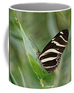 Coffee Mug featuring the photograph Zebra Longwing Butterfly - 2 by Paul Gulliver