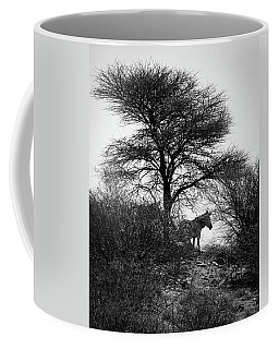 Coffee Mug featuring the photograph Zebra On A Hill  by Ernie Echols